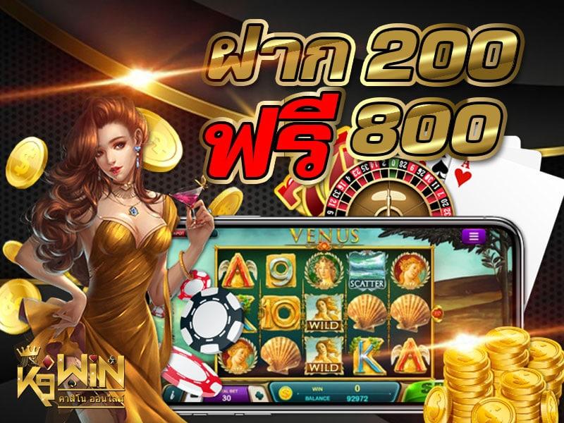 k9win-800X600-2